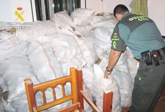Un agente contabiliza los sacos de piñas incautados.