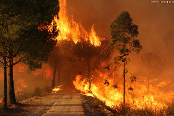Imagen del incendio declarado este verano en Minas de Riotinto.